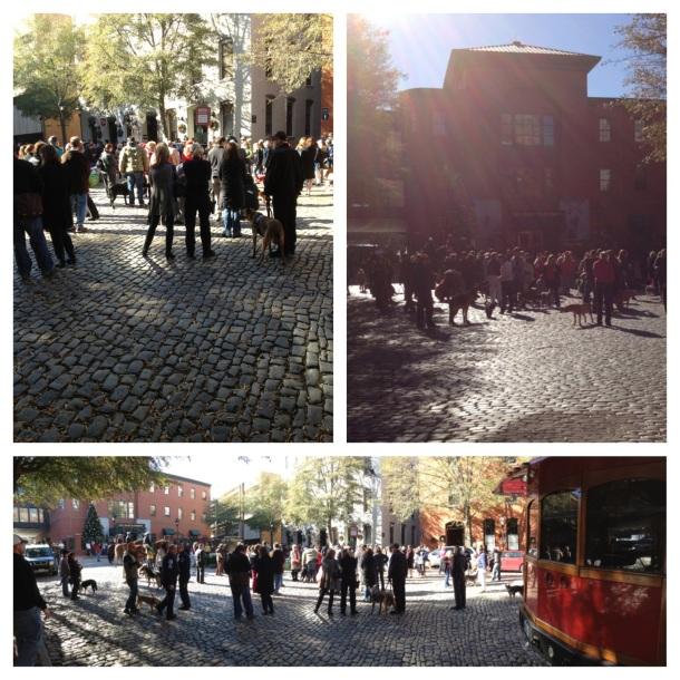 Photo 2012-12-20 09.58.14 PM